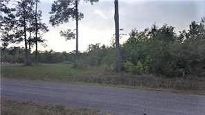 Photo of Alston Cemetery Road, DeQuincy, LA 70657 (MLS # 186669)