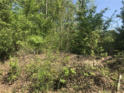 Photo of TBD Section Line Road, Leesville, LA 71446 (MLS # 191983)