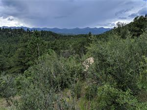 Photo of TBD North Fork Ranch #Lot 10, Weston, CO 81091 (MLS # 19-1002)