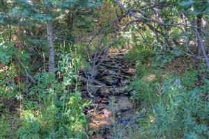 Photo of TBD Tres Valles West #Lot 10, LaVeta, CO 81055 (MLS # 19-1040)