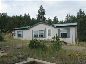 Photo of 16301 County Rd 31.9, Weston, CO 81091 (MLS # 19-1047)
