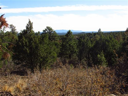 Photo of 175 Blackhawk Ranch Filing #10, Aguilar, CO 81020 (MLS # 20-1082)