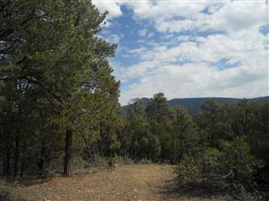 Photo of 33817 Turkey Creek Lane #B 67, Trinidad, CO 81082 (MLS # 19-109)