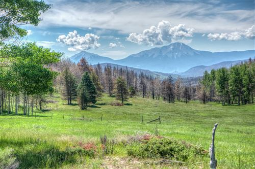 Photo of 3652 CO RD 443, La Veta, CO 81055 (MLS # 20-110)