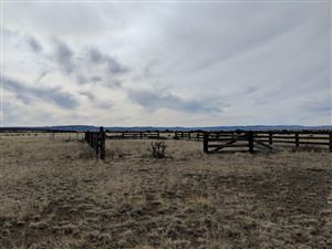 Photo of TBD County Road 133, Trinidad, CO 81082 (MLS # 19-126)