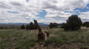 Photo of 24550 West Lane #Lot 48, Trinidad, CO 81082 (MLS # 14-196)