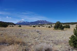 Photo of Lot 65 Navajo Ranch Resorts #1, Walsenburg, CO 81089 (MLS # 18-225)