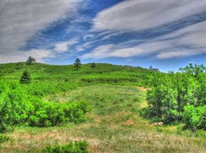 Photo of Tract 26 Raspberry Mtn. Ranch, LaVeta, CO 81055 (MLS # 14-435)