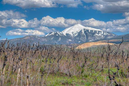 Photo of Raspberry Mountain Ranch #8, La Veta, CO 81055 (MLS # 21-533)
