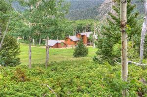 Photo of 217 Baker Creek Ct, Cuchara, CO 81055 (MLS # 19-765)