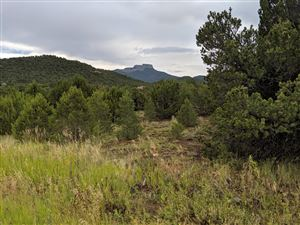 Photo of TBD Reserve at Fishers Peak #Lot 22, Trinidad, CO 81082 (MLS # 19-842)