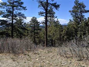 Photo of TBD Timber Park Drive #Lot D77, Trinidad, CO 81082 (MLS # 19-854)