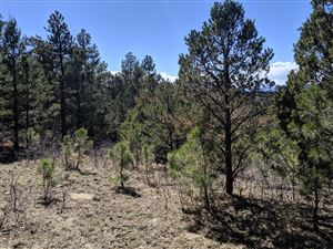 Photo of TBD Timber Park Drive #Lot D78, Trinidad, CO 81082 (MLS # 19-855)