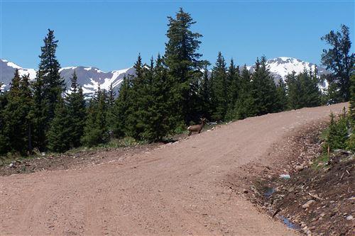Photo of Timber Ridge Trail # 6, Cuchara, CO (MLS # 16-882)