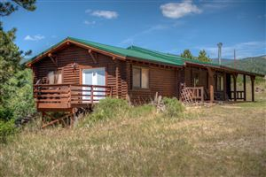 Photo of 10810 MT SHAVANO Drive, Aguilar, CO 81020 (MLS # 18-901)