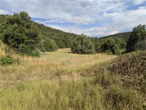 Photo of TBD Picketwire Ranch #Lot 2A, Trinidad, CO 81082 (MLS # 19-910)