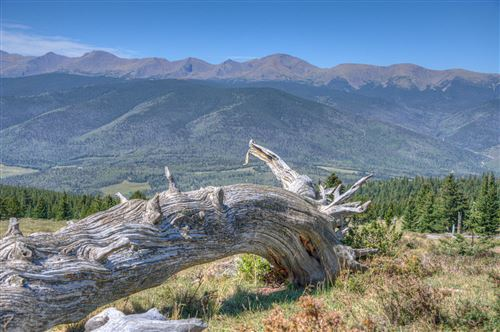 Photo of Lot 8 Timber Ridge at Cordova Pass, Cuchara, CO (MLS # 20-919)