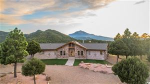 Photo of 29032 Cougar Trail, Aguilar, CO 81020 (MLS # 19-938)