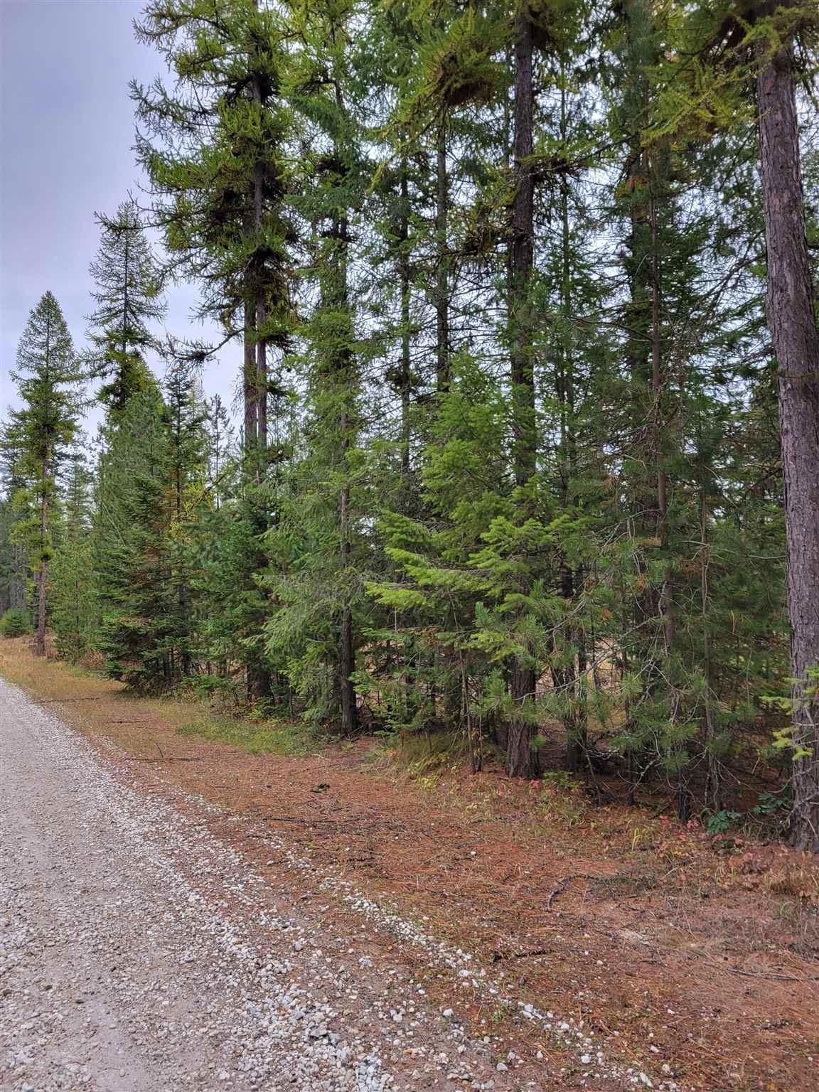 Photo of XXX Oregon Way, Clayton, WA 99110 (MLS # 202124007)