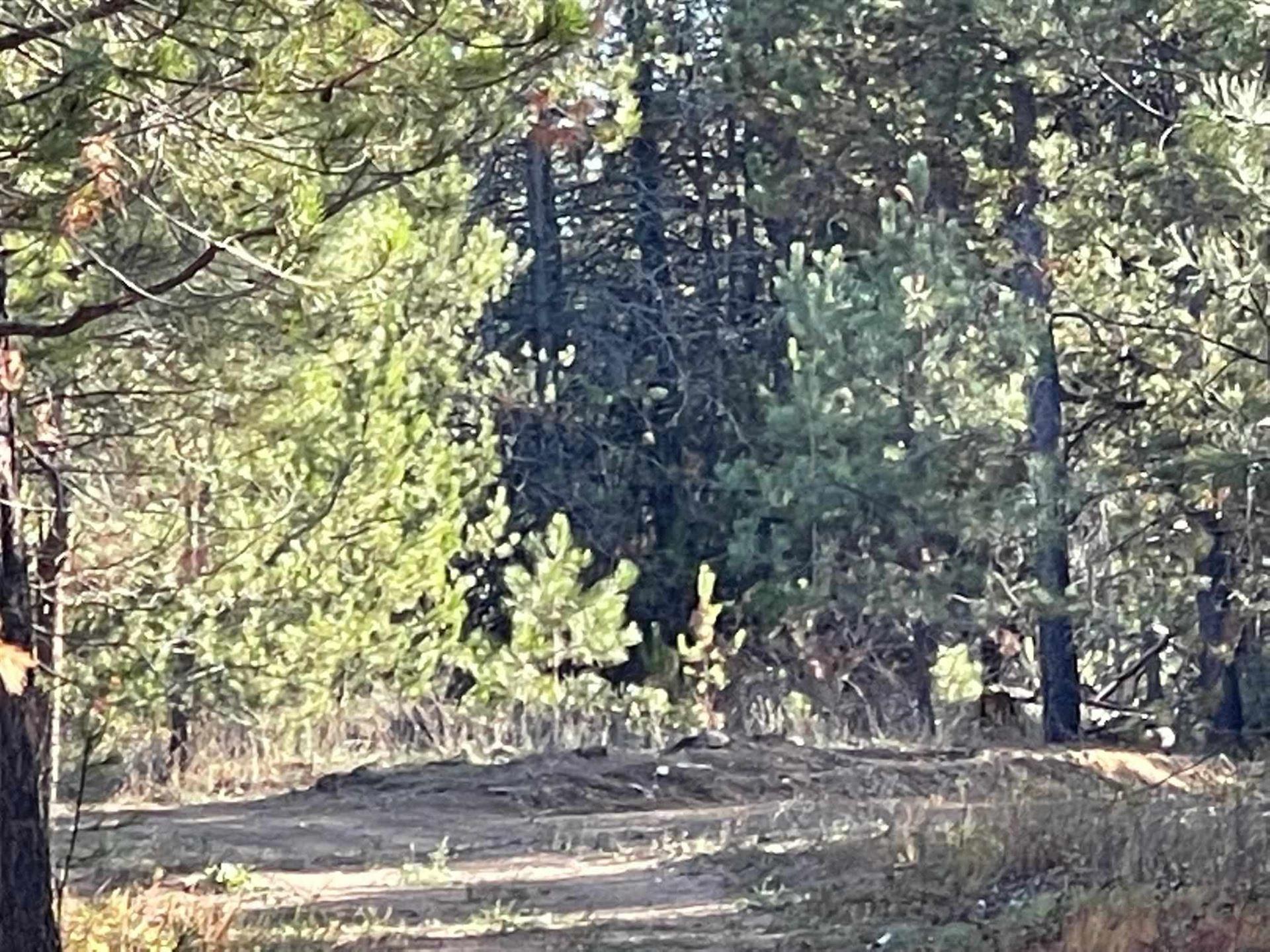 Photo of 1805 W Mason Rd, Deer Park, WA 99006 (MLS # 202124020)