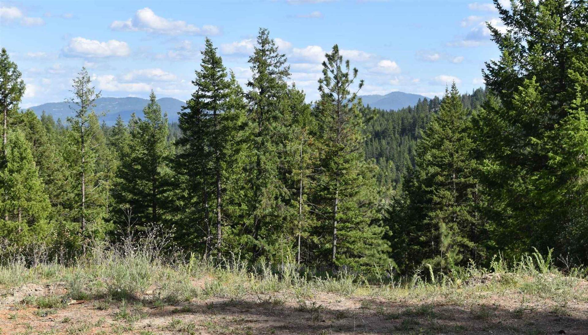 14408 N Mountain View Ln, Newman Lake, WA 99025 - #: 202117071