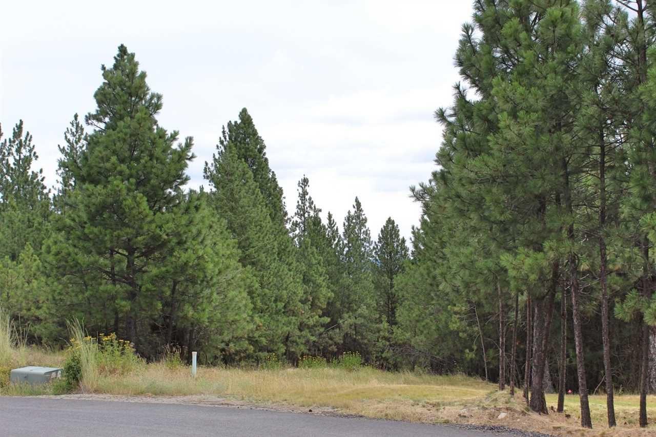 13419 S Lookout Ln, Spokane, WA 99224 - #: 202010115
