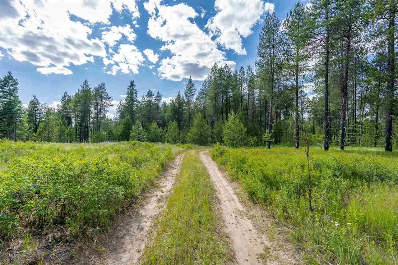 10700 E Whispering Pines Ln, Elk, WA 99009 - #: 202021323