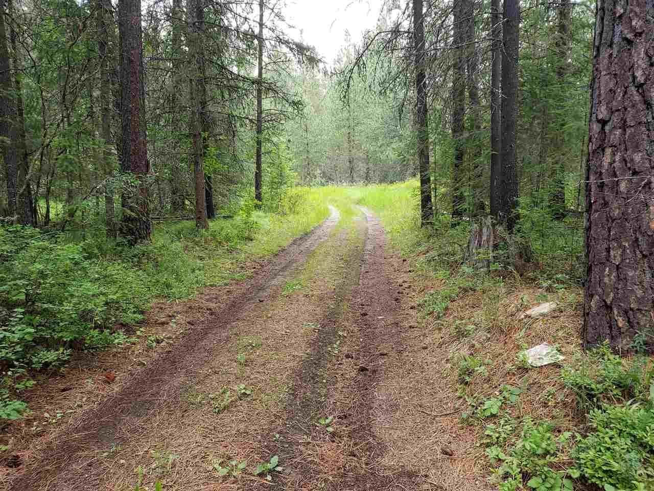 XXX Forest Service Rd, Springdale, WA 99173 - #: 202018400