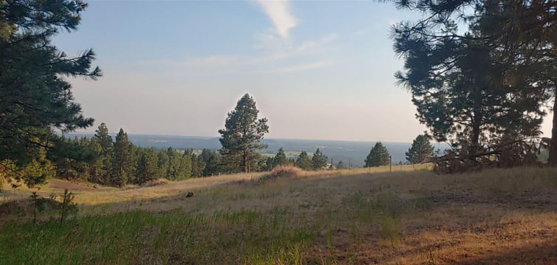 XXXX E Custer Ln, Spokane, WA 99223 - #: 202119409