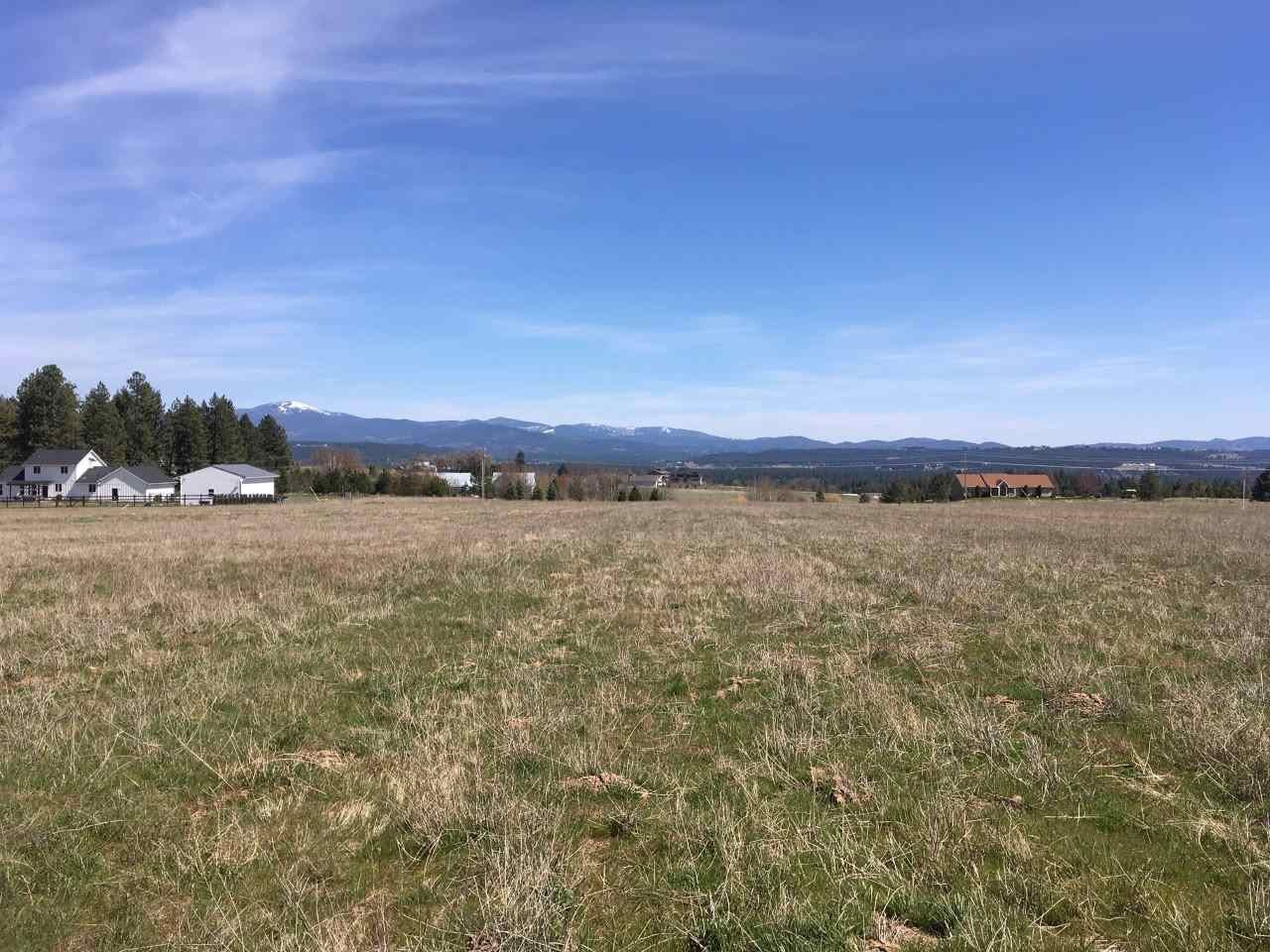 xx N Division Tract 5 Rd, Colbert, WA 99005 - #: 202014448