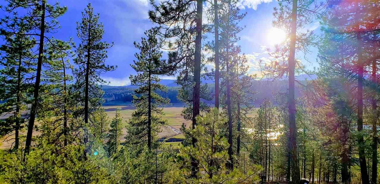 TBD Highway 231 Hwy, Valley, WA 99181 - #: 202013621
