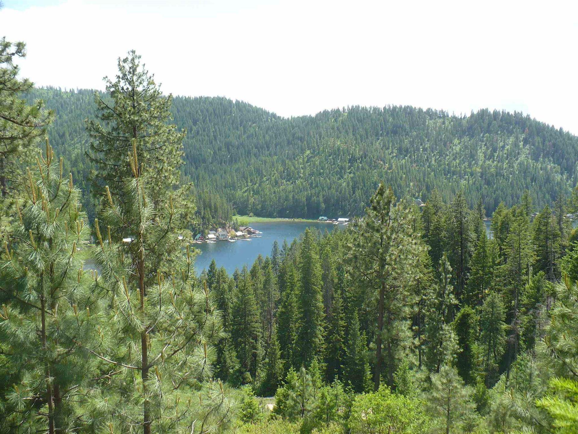4139 N Deer Lake Rd #Lot 5, Loon Lake, WA 99148 - #: 202116774
