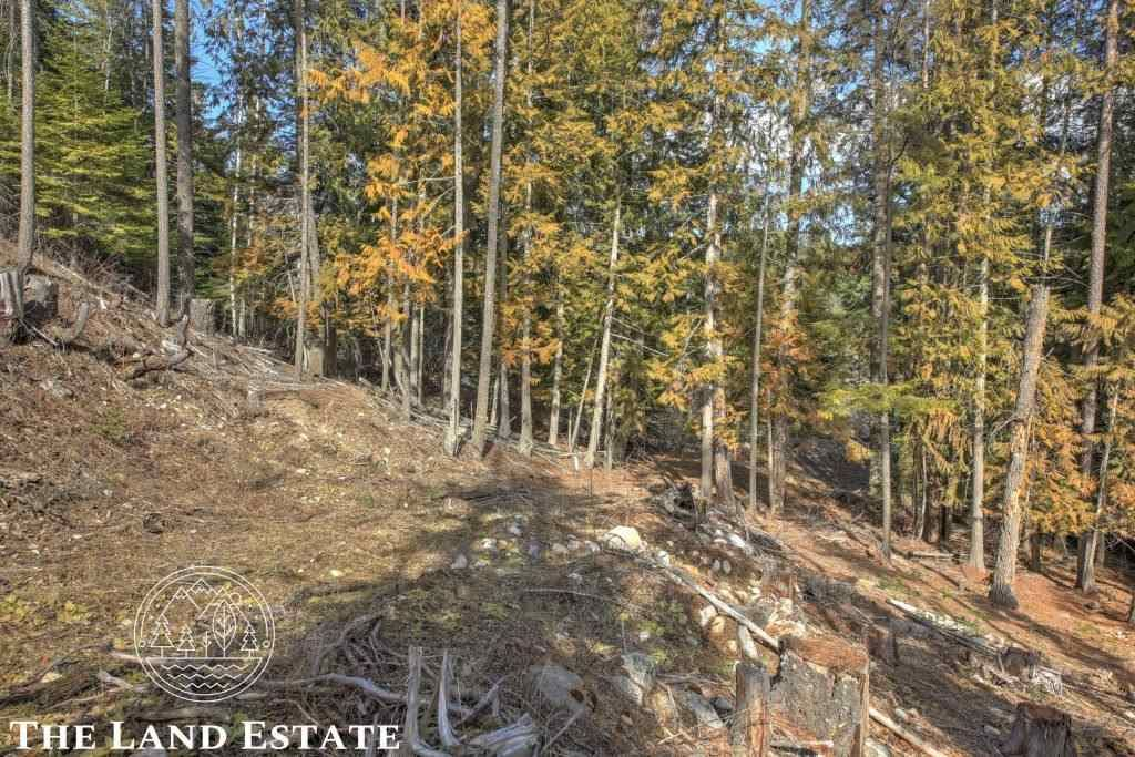 Reynolds Creek Rd, Cusick, WA 99119 - #: 202014837