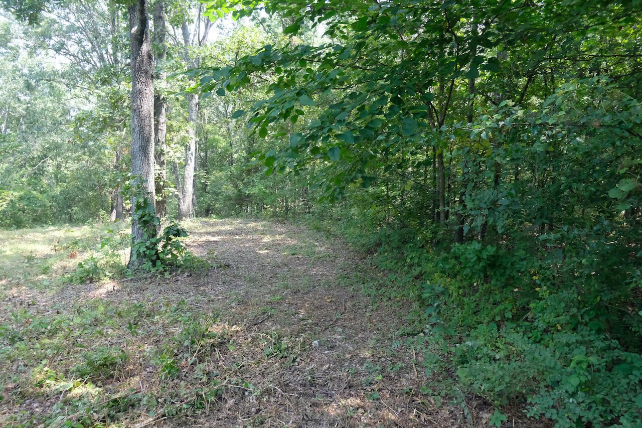 Photo of 000 Private Road 8927, West Plains, MO 65775 (MLS # 60197537)