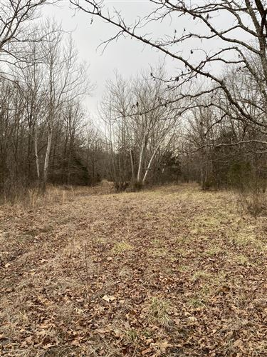 Photo of Tbd County Road 6800, West Plains, MO 65775 (MLS # 60184633)