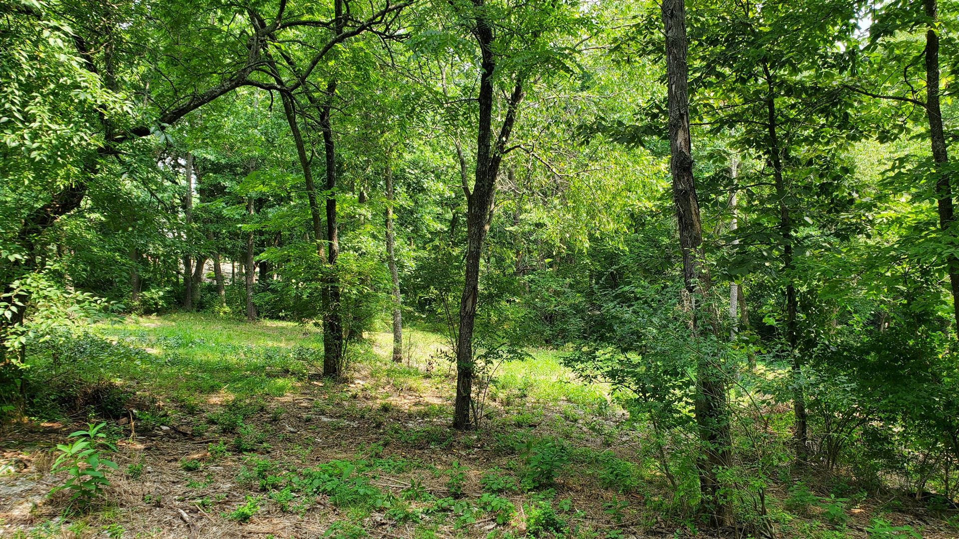 Photo of 000 East Timber Rock Place, Springfield, MO 65804 (MLS # 60197652)