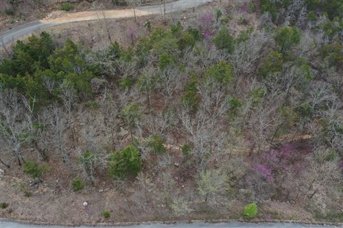 Photo of Lot 193 Emerald Pointe Phase 9, Hollister, MO 65672 (MLS # 60190750)