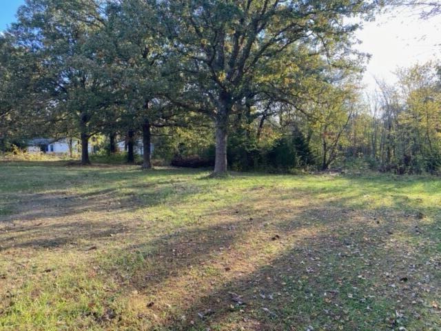 Photo of 10062 North Farm Road 186, Pleasant Hope, MO 65725 (MLS # 60203755)