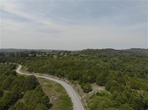 Photo of Lot 13 Mills Hollow Road, Branson, MO 65616 (MLS # 60150771)