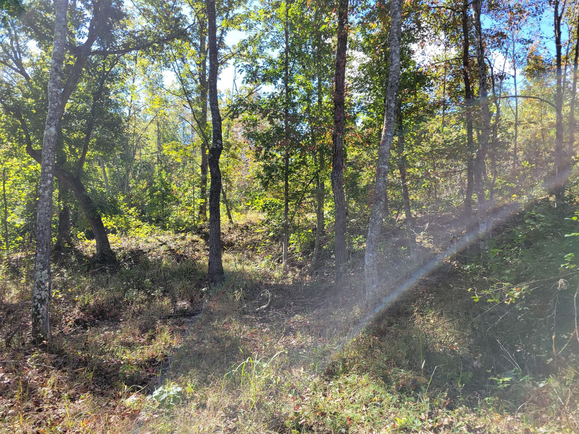 Photo of 000 Private Road 3422, Mountain View, MO 65548 (MLS # 60203778)