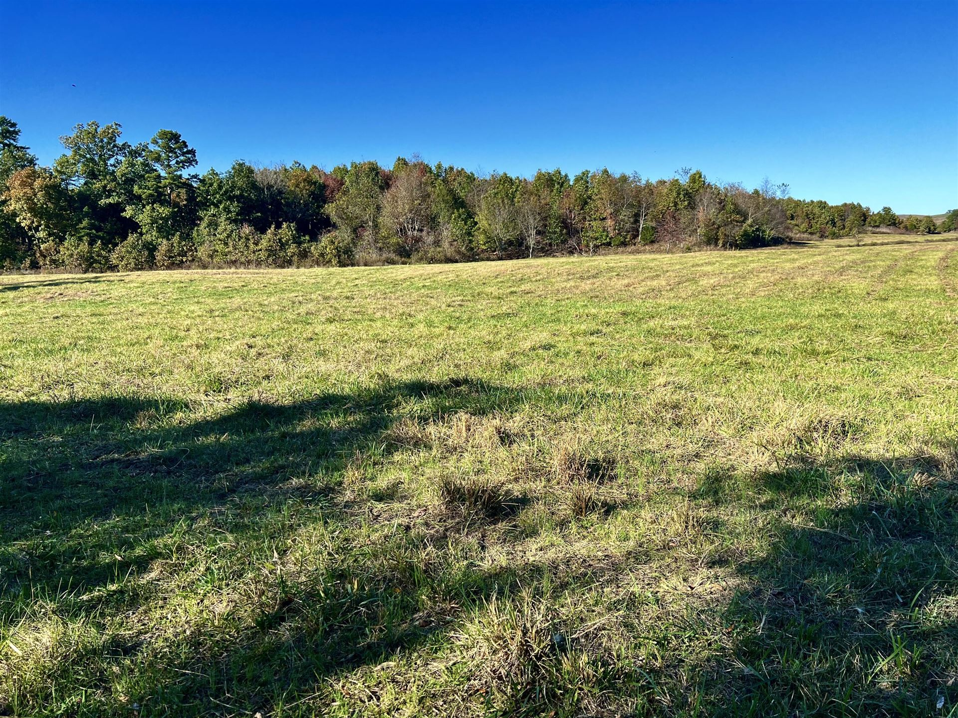 Photo of 15097 Sargent Road, Cabool, MO 65689 (MLS # 60203779)