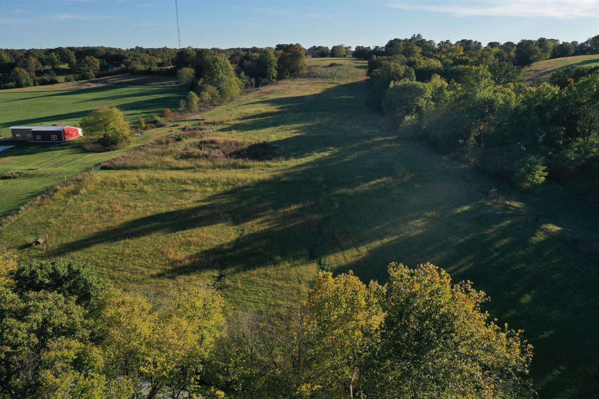 Photo of 000 Panther Creek Road, Fordland, MO 65652 (MLS # 60203826)