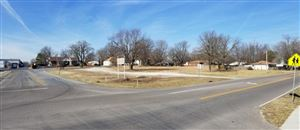 Photo of 314 South Main Street, Rogersville, MO 65742 (MLS # 60097828)
