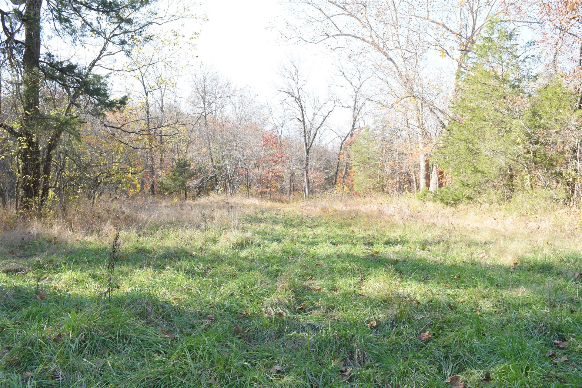 Photo of Tbd State Hwy Jj, Hollister, MO 65672 (MLS # 60177845)