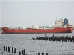 Photo of 90 Bay Street 1e Landing #1e, Staten Island, NY 10301 (MLS # 1121082)