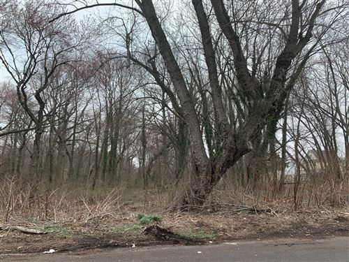 Photo of 0 Aultman Avenue, Staten Island, NY 10306 (MLS # 1136589)