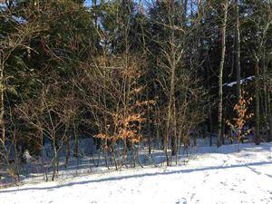 Photo of TBD Cattail, Livingston Manor, NY 12758 (MLS # 48009)