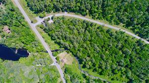 Photo of 1 Chapin Trail, White Lake, NY 12720 (MLS # 48030)