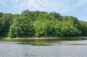 Photo of 153 Woodstone Trail, Bethel, NY 12720 (MLS # 48032)