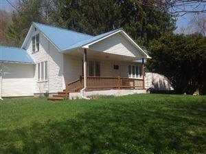 Photo of 309 Debruce, Livingston Manor, NY 12758 (MLS # 48041)